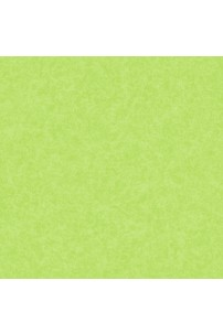 papel-de-parede-girl-power-verde-cod-kd-1875
